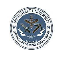 Minecraft University - Mining & Cubing Photographic Print