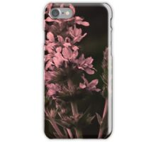 HOARY VERVAIN wild flower digital art iPhone Case/Skin
