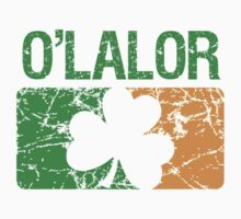 O'Lalor Surname Irish by surnames
