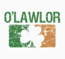 O'Lawlor Surname Irish by surnames