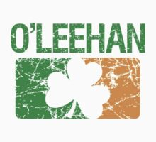 O'Leehan Surname Irish by surnames