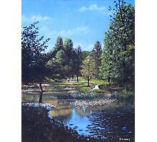 Southampton Hillier Gardens late summer Photographic Print