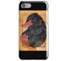 Fantastic beasts 8 iPhone Case/Skin