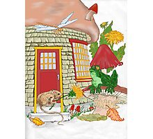Mouse house Photographic Print