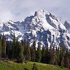 Nez Perce Peak by David Kocherhans
