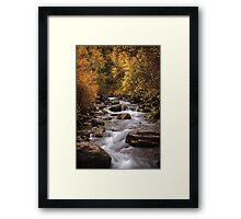 Autumn Stream 3 Framed Print