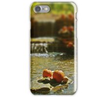 An Afternoon In Autumn iPhone Case/Skin