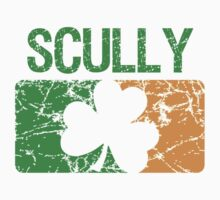 Scully Surname Irish by surnames