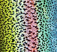 Rainbow Trout Skin Phone case 3 by dvampyrelestat