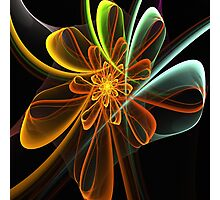 Glowing Bow Flower Photographic Print