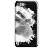Two of Shells - Abstract Macro iPhone Case/Skin