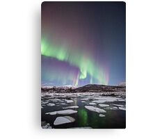 The ice cubes Canvas Print