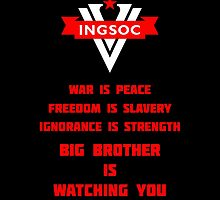 INGSOC Guidelines by Strigon67