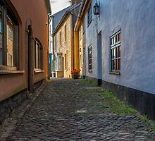 The Cobbles by David-J