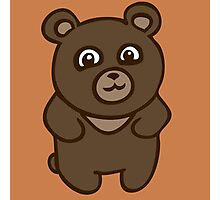 teddy bear ours peluche Photographic Print