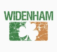 Widenham Surname Irish by surnames