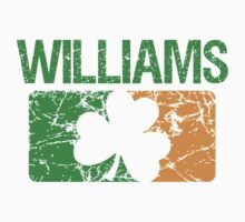 Williams Surname Irish by surnames