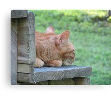 Garfield Resting Canvas Print