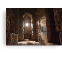 Perfect light in Provins Canvas Print