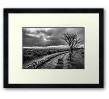 Dark Dartmoor, Devon, UK Framed Print