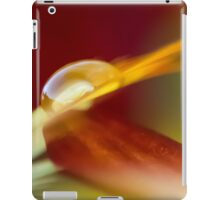 Anticipate Your Touch iPad Case/Skin