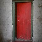 The Red Door by Elaine Teague