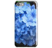 Blue Hydrangea  iPhone Case/Skin