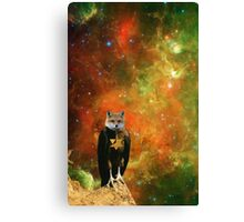STAR FOX. Canvas Print
