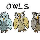 Owls by Logan81