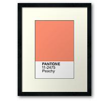 PANTONE Peachy Framed Print