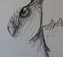 Owl sketch by ashleylewisart