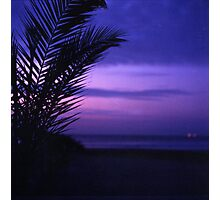 Palm tree on beach Ibiza silhouette against dusk sunset sky square medium format film analogue photos Photographic Print