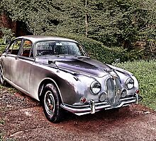 Vintage Jaguar by Kawka