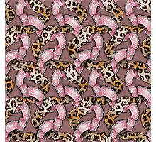 Leopards'n Lace - Pink Photographic Print