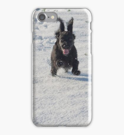 Black cocker spaniel in snow iPhone Case/Skin