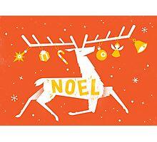 Reindeer Noel! Photographic Print