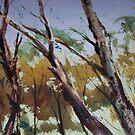 Beneath the Ranges, Trawool Victoria Australia by Margaret Morgan (Watkins)