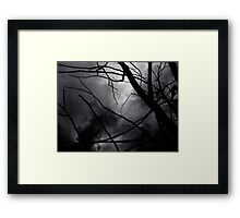 Tree branches in silhouette against winter sky black and white silver gelatin 645 medium format film analog photo Framed Print
