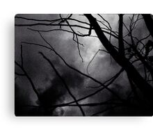 Tree branches in silhouette against winter sky black and white silver gelatin 645 medium format film analog photo Canvas Print