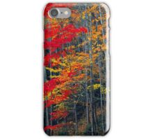 TREES,AUTUMN iPhone Case/Skin