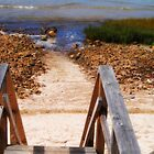 Stairs to the Beach by Linda  Makiej Photography