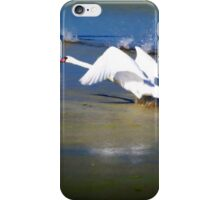Swans Takeoff iPhone Case/Skin