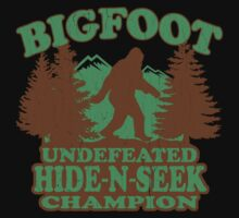 Bigfoot Hide N Seek Champion (vintage distressed) Kids Clothes