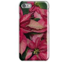 poinsettia iPhone Case/Skin