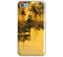 Park Day iPhone Case/Skin