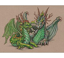 Forest Dragons Photographic Print