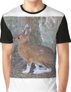 Snowshoe hare (Lepus americanus) in Spring Graphic T-Shirt