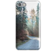 trekking path in an autumn day in the alps iPhone Case/Skin