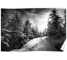 Sunny day in the alps after the snowfall Poster