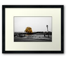 evening in Prague Framed Print